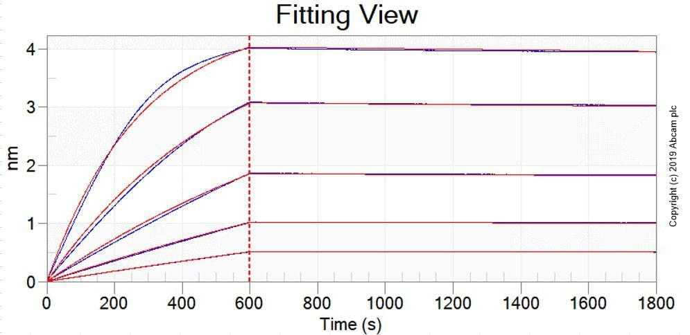 Other - Anti-Polyethylene glycol antibody [EPR21993-154] (ab203857)