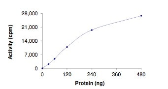 Functional Studies - Recombinant human LRRK2 (mutated Y1699 G) protein (ab204089)