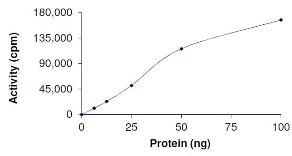 Functional Studies - Recombinant human Bcr + Ret protein (ab204103)