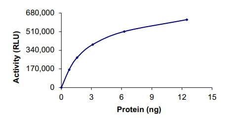 Functional Studies - Recombinant human FGFR2 (mutated V564 F) protein (ab204104)