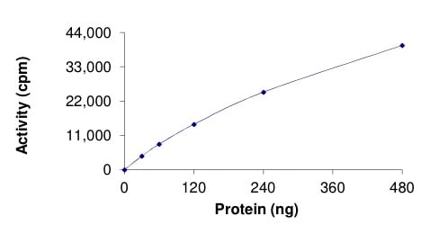Functional Studies - Recombinant human Activin Receptor Type IA (deletion P197, mutated F198 L) protein (ab204142)