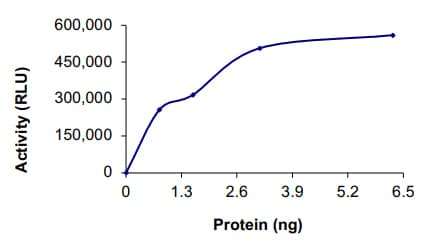 Functional Studies - Recombinant human BRAF (mutated V600 E) protein (Active) (ab204154)