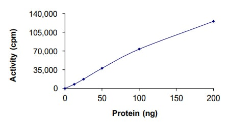 Functional Studies - Recombinant human ITK/EMT protein (Active) (ab204156)