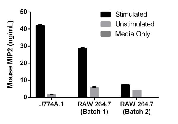 Mouse MIP2 expression is shown for cultured media from two mouse cell lines.