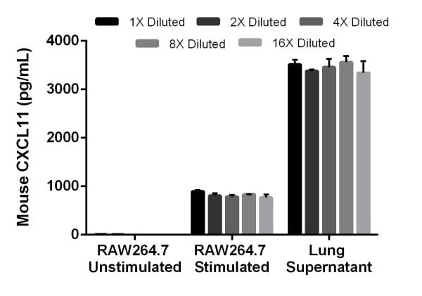 Interpolated concentrations of mouse CXCL11 in RAW264.7 cell culture supernatant (unstimulated and LPS stimulated) and mouse lung supernatant (stimulated with LPS and PMA).