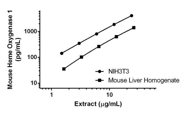 Quantitation of Heme Oxygenase 1 expression in different cell extracts.