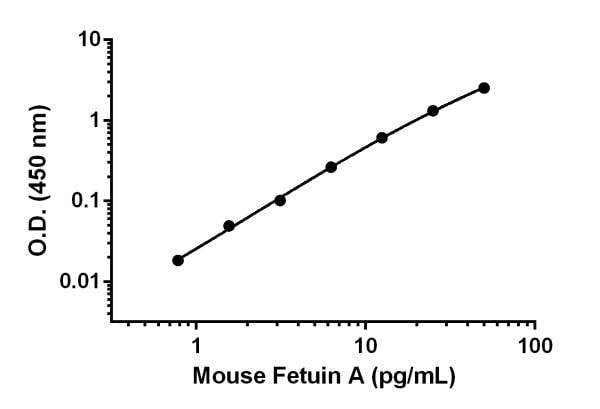 Example of Fetuin A standard curve in Sample Diluent NS + Enhancer.