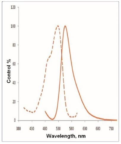 Spectral Characteristics of Efflux Gold Detection Reagent