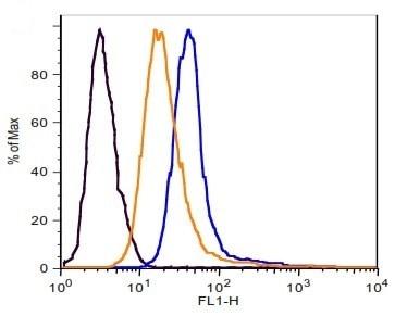 Glucose Uptake Assay Kit (Cell-based) (ab204702)
