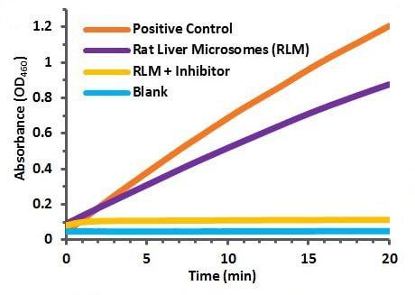 Cytochrome P450 Reductase Activity Assay Kit (Colorimetric) (ab204704)