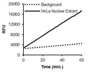 Histone Acetyltransferase Activity Assay Kit (Fluorometric) (ab204709)