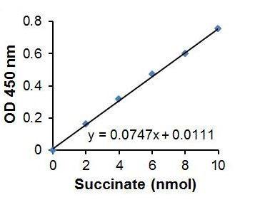 Succinate Assay Kit (Colorimetric) (ab204718)