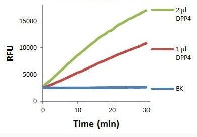 Dipeptidyl peptidase IV (DPP4) Activity Assay Kit (Fluorometric) (ab204722)