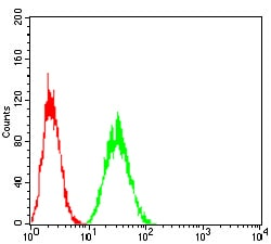 Flow Cytometry - Anti-LDL Receptor antibody [1B10H10] (ab204941)