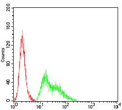 Flow Cytometry - Anti-Kv4.2/KCND2 antibody [5B11B9] (ab204942)