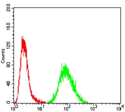 Flow Cytometry - Anti-Prealbumin antibody [2E10C5] (ab204997)