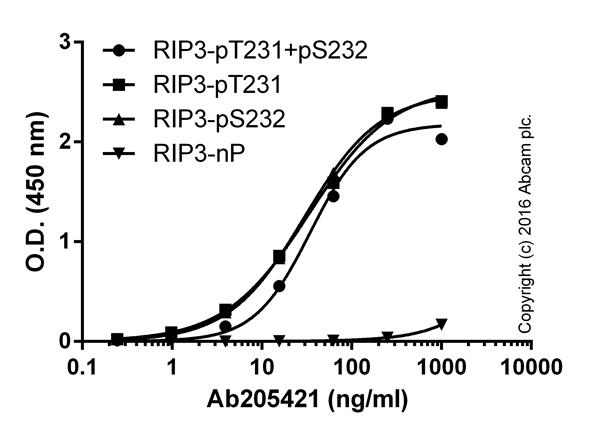 ELISA - Anti-RIP3 (phospho T231 + S232) antibody [2D7] (ab205421)
