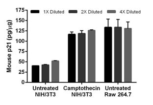 Camptothecin treatment of NIH/3T3 cells induces expression of p21.