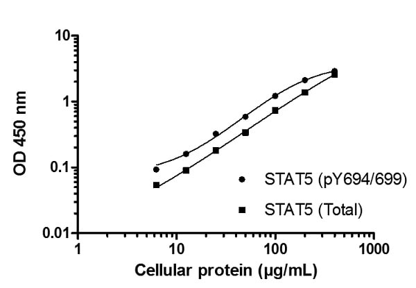 Example of a typical STAT5 A/B (pY694/699) and STAT5 A/B (Total) cell lysate dilution series