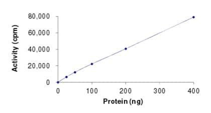 Functional Studies - Recombinant human c-Kit protein (ab205798)