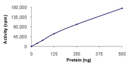 Functional Studies - Recombinant human TrkA protein (ab205799)