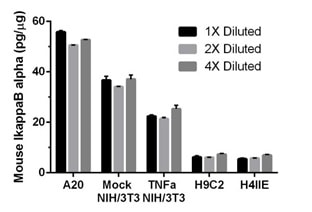 Interpolated concentrations of IkappaB alpha in various untreated and treated mouse and rat cell extract samples.