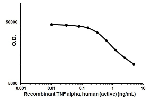Functional Studies - Recombinant human TNF alpha protein (ab206641)