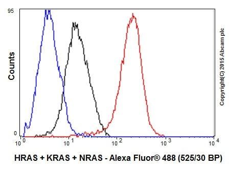 Flow Cytometry - Anti-KRAS+HRAS+NRAS antibody [EPR18713-13] (ab206969)