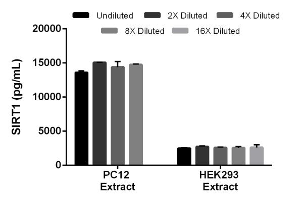 Interpolated concentrations of SIRT1 in rat PC12 extract and human HEK293 extract based on a 1 mg/mL extract load.