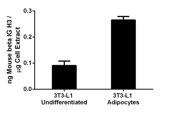 Assay specificity is demonstrated on 3T3-L1 cells.