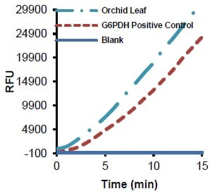 Measurement of glucose-6-phosphate dehydrogenase activity in orchid leaf lysate (0.6 µg) using a G6PDH Activity Assay Kit.