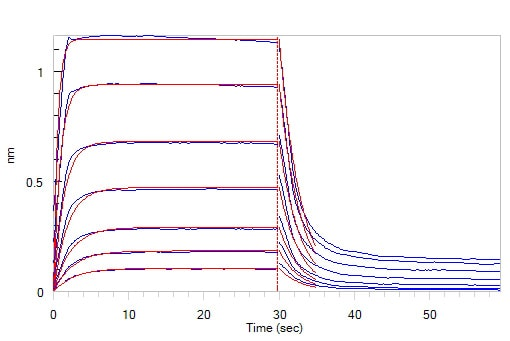 Functional Studies - Recombinant human CD32A protein (ab207140)
