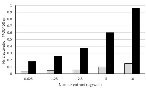 Nuclear extracts from untreated HepG2 cells (Light gray) and HepG2 cells treated with D,L Sulforaphane (Black) were assayed from 0.625 to 10 µg/well for Nrf2 activation using ab207223.