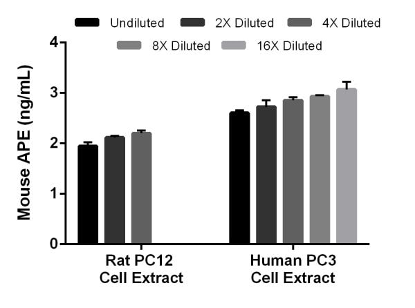 Interpolated concentrations of native APE in rat PC12 cell extract and mouse PC3 cell extract based on 12.5 µg/mL and 100 µg/mL extract loads, respectively.
