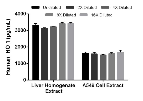 Interpolated concentrations of native Heme Oxygenase 1 in human  liver homogenate extract and A549 cell extract based on a 15.6 µg/mL liver homogenate extract and 5 µg/mL A549 cell extract load.