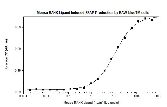 Functional Studies - Recombinant mouse RANKL protein (Animal Free) (ab207959)