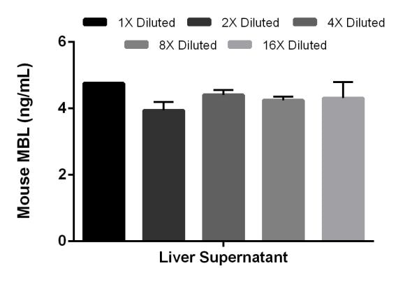 Interpolated concentrations of native MBL in mouse liver supernatant samples