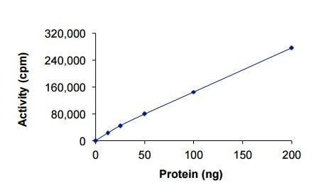 Functional Studies - Recombinant human EGFR protein (ab208473)