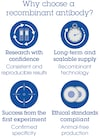 Alexa Fluor® 594 Anti-TDP43 antibody [EPR5811] (ab208542)