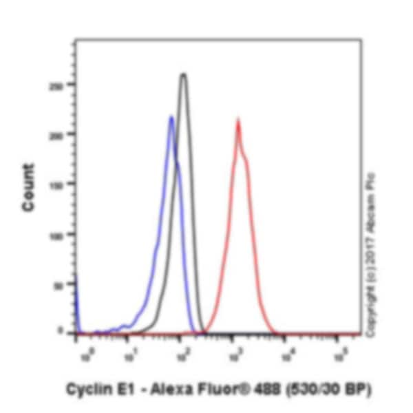 Flow Cytometry - Anti-Cyclin E1 antibody [EPR194] - BSA and Azide free (ab208695)