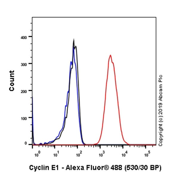 Flow Cytometry - Anti-Cyclin E1 antibody [EP435E] - BSA and Azide free (ab208696)