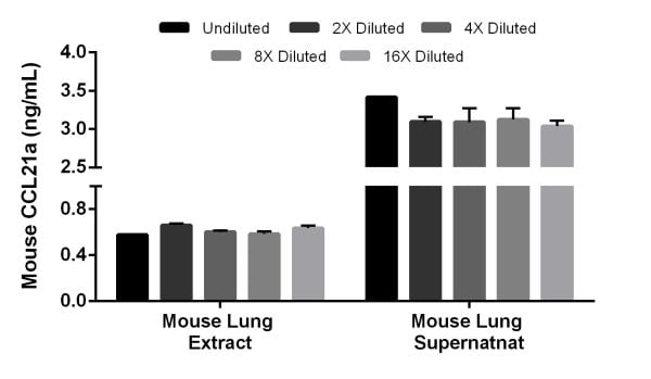 Interpolated concentrations of native CCL21a in mouse lung extract and mouse lung supernatant samples.