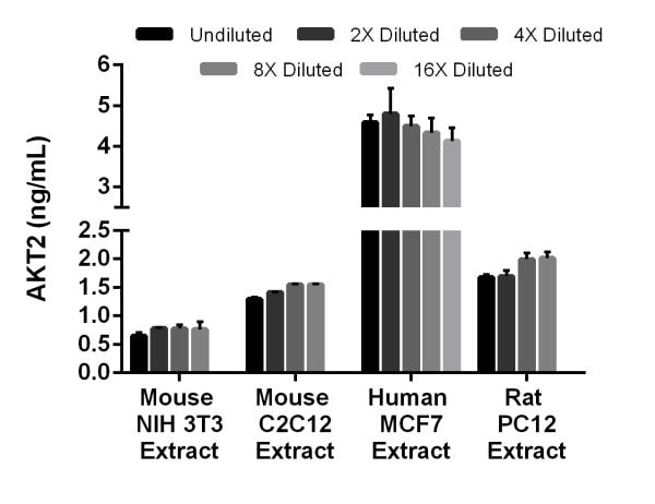 Interpolated concentrations of native AKT2 in mouse NIH 3T3, mouse C2C12, human MCF7, and rat PC12 extracts based on 25 µg/mL, 50 µg/mL, 100 µg/mL, and 37.5 µg/mL extract loads, respectively.