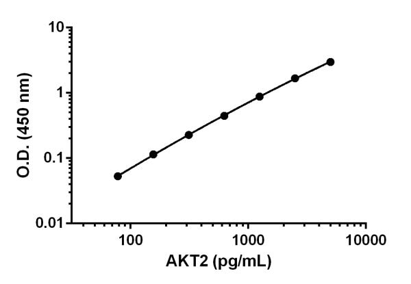 Example of AKT2 standard curve in Sample Diluent NS.