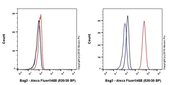 Flow Cytometry - Anti-Bag3 antibody [EPR20207-109-3] (ab209251)