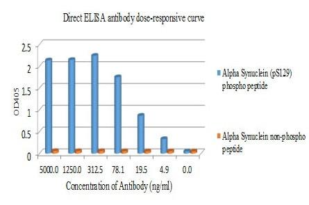 ELISA - Anti-Alpha-synuclein (phospho S129) antibody [EP1536Y] - BSA and Azide free (ab209422)