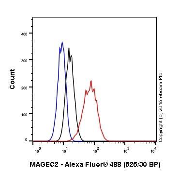 Flow Cytometry - Anti-MAGEC2 antibody [EPR19064] (ab209667)