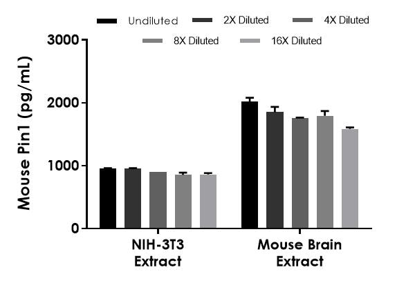 Interpolated concentrations of native Pin1 in mouse NIH-3T3 extract based on a 35 µg/mL extract load and mouse brain extract based on a 50 µg/mL extract load.