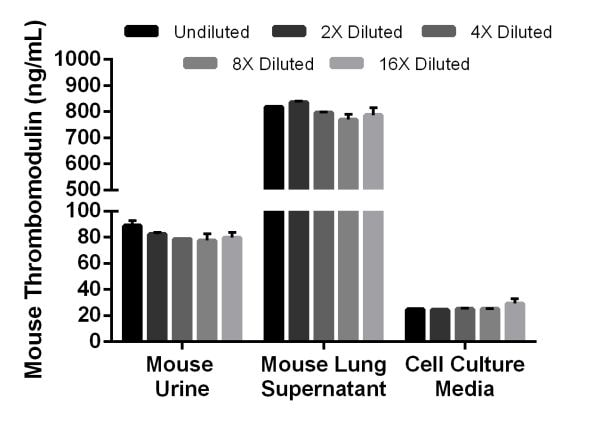 Interpolated concentrations of native Thrombomodulin in mouse urine and mouse lung supernatant samples and spiked Thrombomodulin in cell culture media