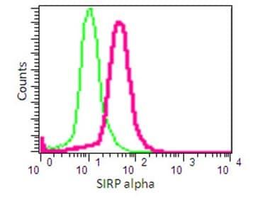 Flow Cytometry - Anti-SIRP alpha antibody [EPR16264] - Low endotoxin, Azide free (ab209892)
